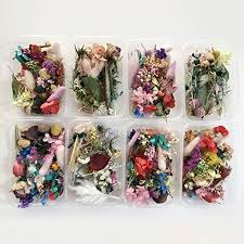Floral Crafts 12x Natural Dried Flowers Blue Flower for DIY Resin ...