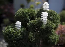 Growing Algae For Biodiesel Use  Growing Algae For Biodiesel Use Backyard Biodiesel