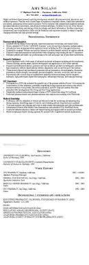 Short Resume Resume For Your Job Application