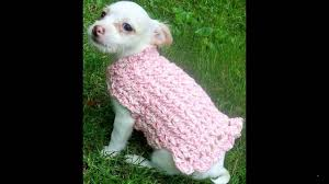 Free Crochet Dog Sweater Patterns Inspiration Free Crochet Sweater Patterns YouTube
