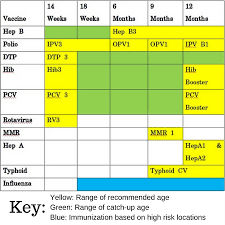 Vaccination Chart For Babies Usa 40 Up To Date Baby Immunizations Chart