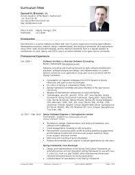 Imposing Ideas Curriculum Vitae Example Trendy Inspiration 8