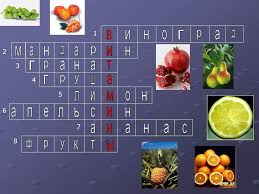 Урок Почему надо есть много овощей и фруктов zinkovskays jimdo  Урок Почему надо есть много овощей и фруктов
