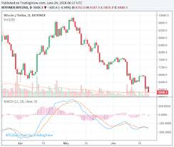 Bitcoin Yearly Chart Bitcoin Price Hits Yearly Low At 5 825 Where Will It