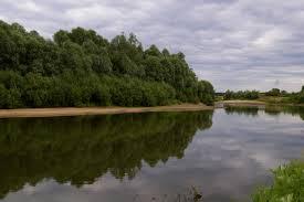 водоёмы р Жиздра