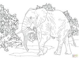 elephants coloring pages elephant coloring pages for s display elephants coloring pages free coloring pages cute