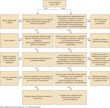 Headache Symptom To Diagnosis An Evidence Based Guide 3e