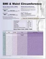 Waist Circumference Chart Bmi And Waist Circumference Anatomical Chart Company
