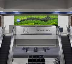 Maybe you would like to learn more about one of these? Wow Amex Cutting Centurion Lounge Guest Access One Mile At A Time