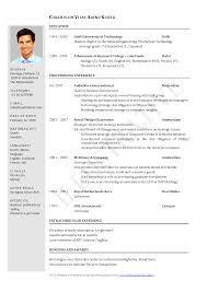 Curriculum Vitae Apa Format Curriculum Letter Of Intent Cv