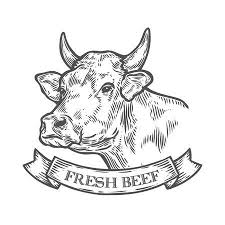 beef cow head clip art. Exellent Beef Cow Head Fresh Beef Organic Meat Hand Drawn Sketch In A Graphic Style For Beef Head Clip Art