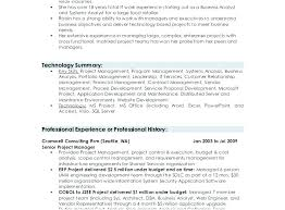 Ability Summary Resume Examples Summary Examples For Resumes Resume