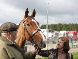 Hollywood film Dream Horse ...