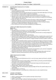 Manufacturing Resume Samples Director Manufacturing Resume Samples Velvet Jobs 11