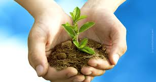 environmental protection fresenius kabi global environment protection