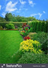 nature landscapes summer flower garden with green bushes and flowers