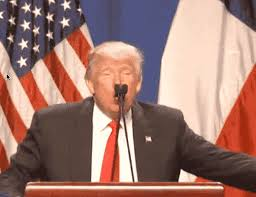 Let's make your photo great again and then be the best meme maker. This Gif Of Trump Mocking Rubio With A Water Bottle Sums Up The State Of The 2016 Campaign Vox