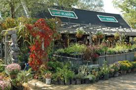 nursery gifts and full service landscape design
