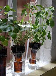 diy self watering container garden ideas 7