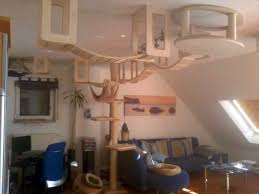 cat shelves covering a whole living room ceiling with cat tree leading up to it