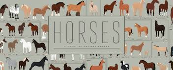 Horses A Chart Of Notable Breeds A Hand Illustrated Art