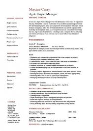 Download Fantastic Agile Scrum Master Resume Sample Image Document