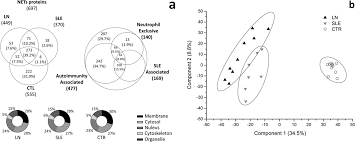 neutrophil exllular traps protein position is specific for patients with lupus nephritis and includes methyl oxidized αenolase methionine sulfoxide