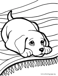 Small Picture Puppy Color Pages Coloring Puppies Kittens Of And Cartoonrocks