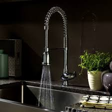 Kitchen Faucets With Sprayer Grohe Kitchen Faucet Sprayer Leaking House Decor