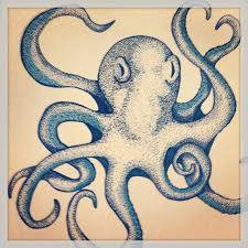 Small Picture 38 best Polvo images on Pinterest Octopuses Animals and Drawings