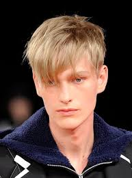 Asian Hair Style Guys short male asian hairstyle haircuts for men 1137 by stevesalt.us