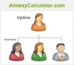 Amway Pv Chart And Amway Income Calculator