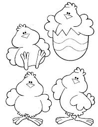 pollitos variados