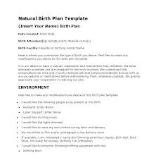 Visual Birth Plan Icons Birth Plan Template Icons The Bump Birthplan Onlinedates Co