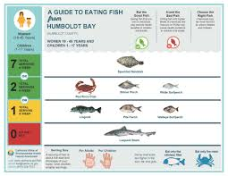 Mercury Levels In Fish Chart Fish Advisory For Humboldt Bay Offers Safe Eating Advice For