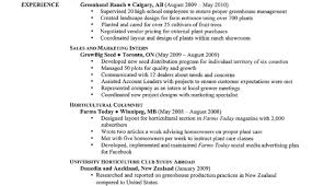 The Best Resumes Ever The 10 Worst Resumes The Employers Have