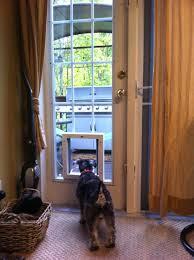 sliding door with dog door built in – islademargarita.info