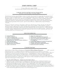 Executive Assistant Sample Resume Objective Executive Assistant Adorable Resume For Executive Assistant