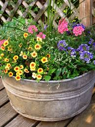Pots And Pansies Container Garden Idea Creating Height Container Garden Ideas Full Sun