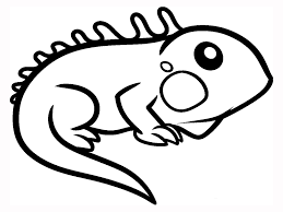 Small Picture Baby Lizard Coloring Pages Coloring Pages