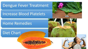 Dengue Fever Treatment Home Remedies And Diet Chart Increase Blood Platelets Count
