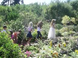 faerie garden. Share This: Faerie Garden