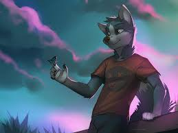 furries images wolf furry hd wallpaper and background photos