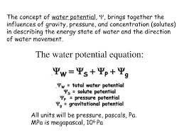 Water Potential Equation Ppt Water And Plant Cells Chapter 3 I Background On Water In