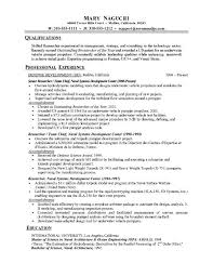 Chronological Resume Format Example Sarahepps Com