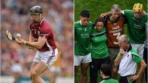 Backroom Team Member Former Galway Hurler Tony Og Regan Replaces Key Limerick