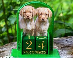 Dog lover calendar | Etsy
