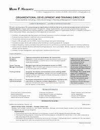 Excellent Resume Templates Gorgeous Copy And Paste Resume Template Unique Classic Resume Template Best