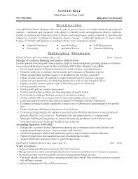 Financial Planning And Analysis Resume Examples Resumes Finance