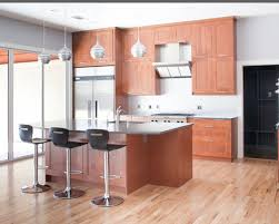 Small Picture Attractive Modern Kitchen Cabinets Ikea